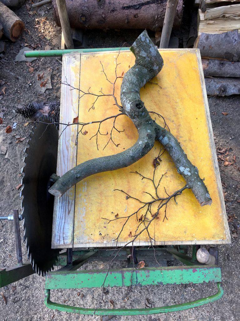 dřevo větev řezání dřeva na zimu cinkuár cirkulárka
